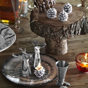 54ead99e96db4_-_holiday-woodland-decor-animal-party-accessories-0112-lgn