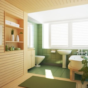 Bathroom-Decorating-Ideas-Pictures-With-Ornamental-Plants